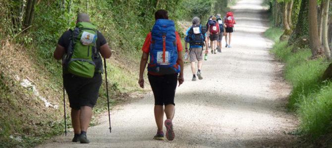 La Via Francigena <br> 100 Km a piedi da Viterbo a Roma